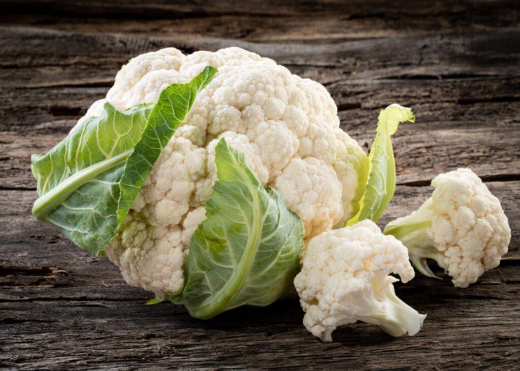 conopida leguma sanatoasa pentru rinichi